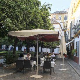 Giua Tours Sevilla-9470