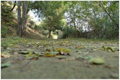 parque de los manantiales - ruta magallanes gelves